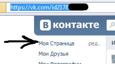 ID в адресной строке браузера